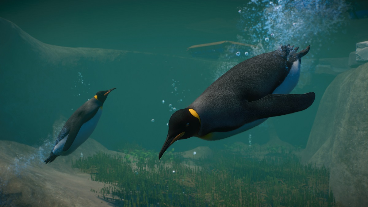 Planet Zoo Le Pack Aquatique Va Faire Des Remous Michapx7